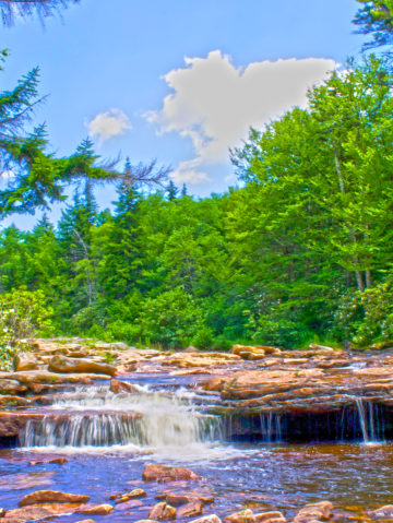 West Virginia: Backpacking the Dolly Sods