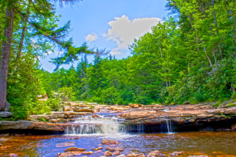 west-virginia_backpacking-dolly-sods_morgan-tilton_11