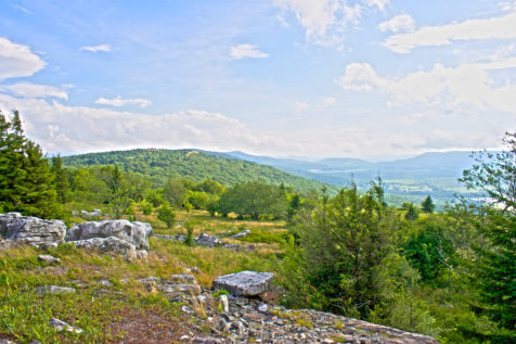 west-virginia_backpacking-dolly-sods_morgan-tilton_4