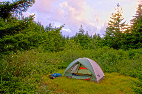 west-virginia_backpacking-dolly-sods_morgan-tilton_5