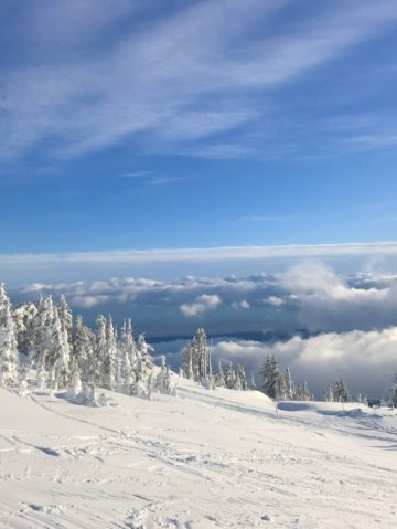 Ski & Surf: the Best of Vancouver Island